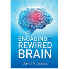 Engaging the Rewired Brain, Dec/2015
